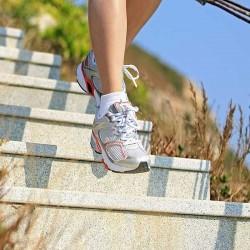 Schiefer Design Line Terrassenplatten Anthrazit 3 cm