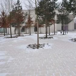 Basalt Palisaden Schwarz 8 x 25 cm